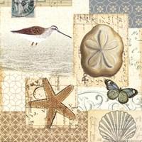 Coastal Collage III Fine Art Print