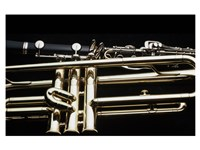 Close - up of a Clarinet and a Trumpet Fine Art Print