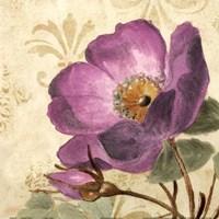 Pourpre Fleur I Fine Art Print