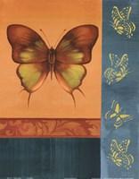 Colorful Wings I Fine Art Print