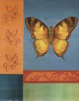 Colorful Wings II Fine Art Print