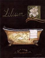 Lilium Bath - mini Fine Art Print