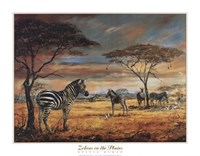Zebras on the Plains Fine Art Print