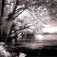 Spring On The River Square I - mini Fine Art Print