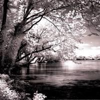 Spring On The River Square I - mini Fine Art Print