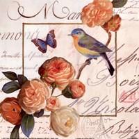 Jardin Des Papillons II Fine Art Print