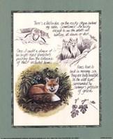 Fox Study Fine Art Print