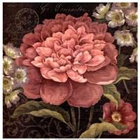 Maribel II Fine Art Print