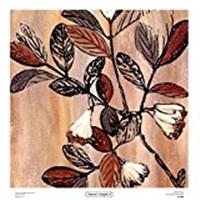 Nature's Graphic I Fine Art Print