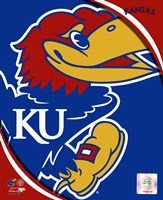 University of Kansas Jayhawks Team Logo Fine Art Print