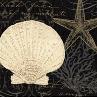 Coastal Moonlight II Fine Art Print