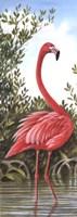 Flamingo 2 Fine Art Print