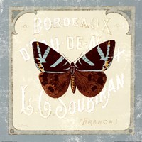 Parisian Butterfly Framed Print
