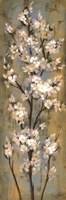 Almond Branch II Fine Art Print