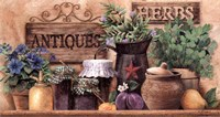 Antiques And Herbs Fine Art Print