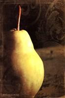 Vintage Pear I Fine Art Print