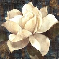 Gardenia Blossom Turquoise Framed Print