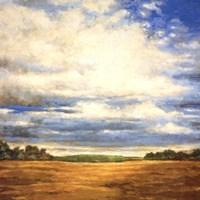 Tranquil Meadow Fine Art Print