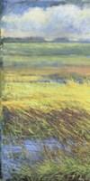 Shimmering Marsh I Fine Art Print