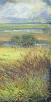 Shimmering Marsh II Fine Art Print