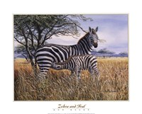 Zebra and Foal Fine Art Print