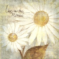 Daisy Do III - Live in the Moment Fine Art Print