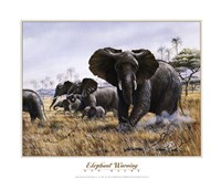 Elephant Warning Fine Art Print