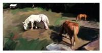 Guilford Horses I Fine Art Print