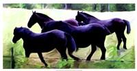 Guilford Horses II Fine Art Print