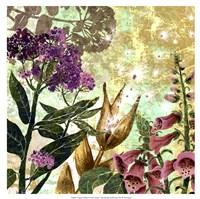 Foxglove Meadow II Fine Art Print
