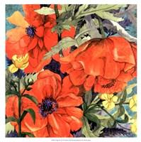 Poppy Play II Fine Art Print
