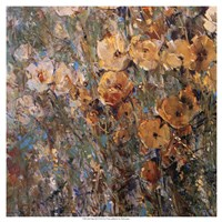 Amber Poppy Field I Fine Art Print