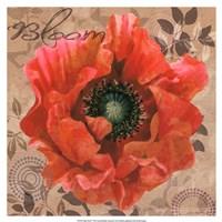 Poppy Swirl V Fine Art Print