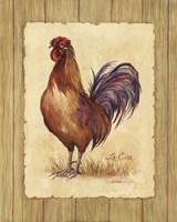 Le Coq Fine Art Print