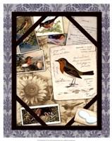 Bird Watching IV Fine Art Print