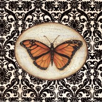 Fanciful Butterfly I Fine Art Print