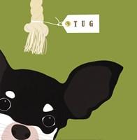 Peek-A-Boo Chihuahua Fine Art Print