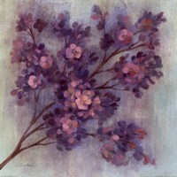 Twilight Cherry Blossoms I Fine Art Print