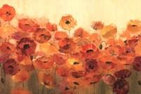 Summer Poppies Fine Art Print
