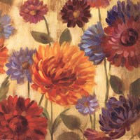 Rainbow Dahlias Crop III Fine Art Print