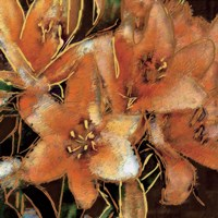 Apricot Dream I Fine Art Print
