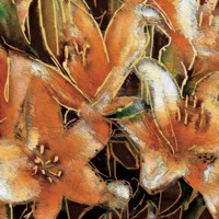 Apricot Dream II Fine Art Print