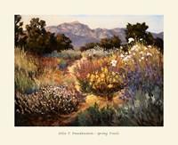 Spring Trails Fine Art Print