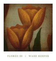 Floreo III Fine Art Print