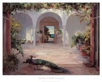 Sunlit Courtyard Fine Art Print