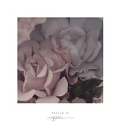 Parfum III Framed Print