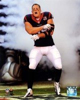 J.J. Watt 2012 Action Fine Art Print