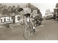 Merckx Dominates Fine Art Print