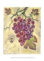 Merlot Fine Art Print