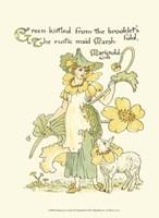 Shakespeare's Garden IX (Marigold) Fine Art Print